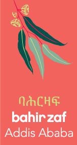 Bahir Zaf logo