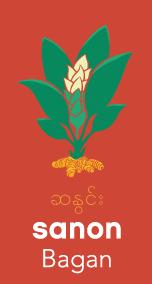 Sanon logo